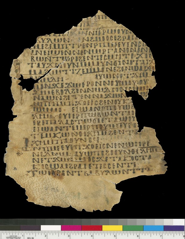 Mich. Ms. 116<br />Psalms. Recto. Parchment. <span>White Monastery, Sohag (Egypt). ca. 10th century. Parchment; 22.5 x 18.8 cm.</span>