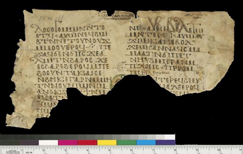 Mich. Ms. 114Gospel of John. Sahidic Dialect. Recto. Parchment.White Monastery, Sohag (Egypt). ca. 10th century. Parchment; 15 x 26 cm.