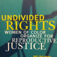 Undivided Rights: Women of Color Organize for Reproductive Justice