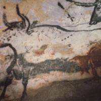 The Cave of Lascaux: The Final Photographs 2