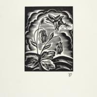 CA flora columbine print.jpg