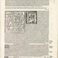 Pliny (Book Six)