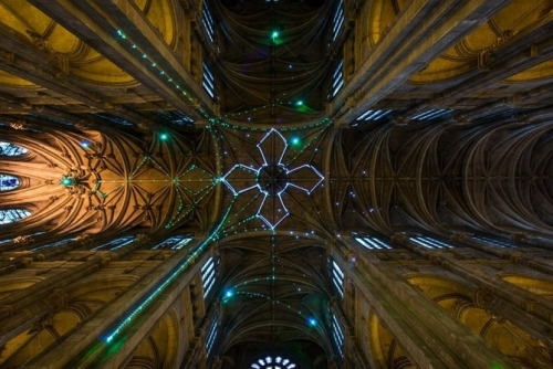 image of cathedral ceiling