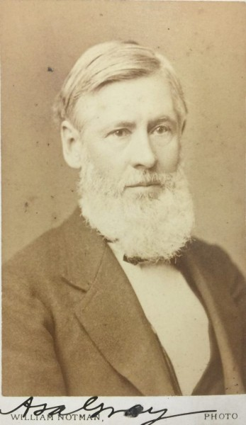 portrait of Asa Gray bearing his signature