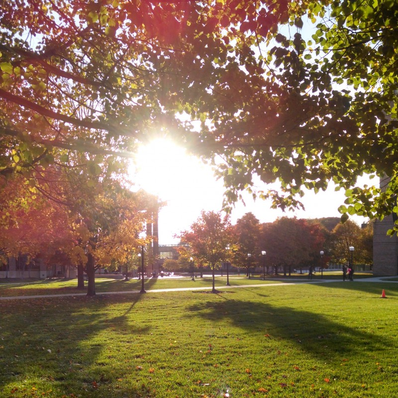 North campus in the fall