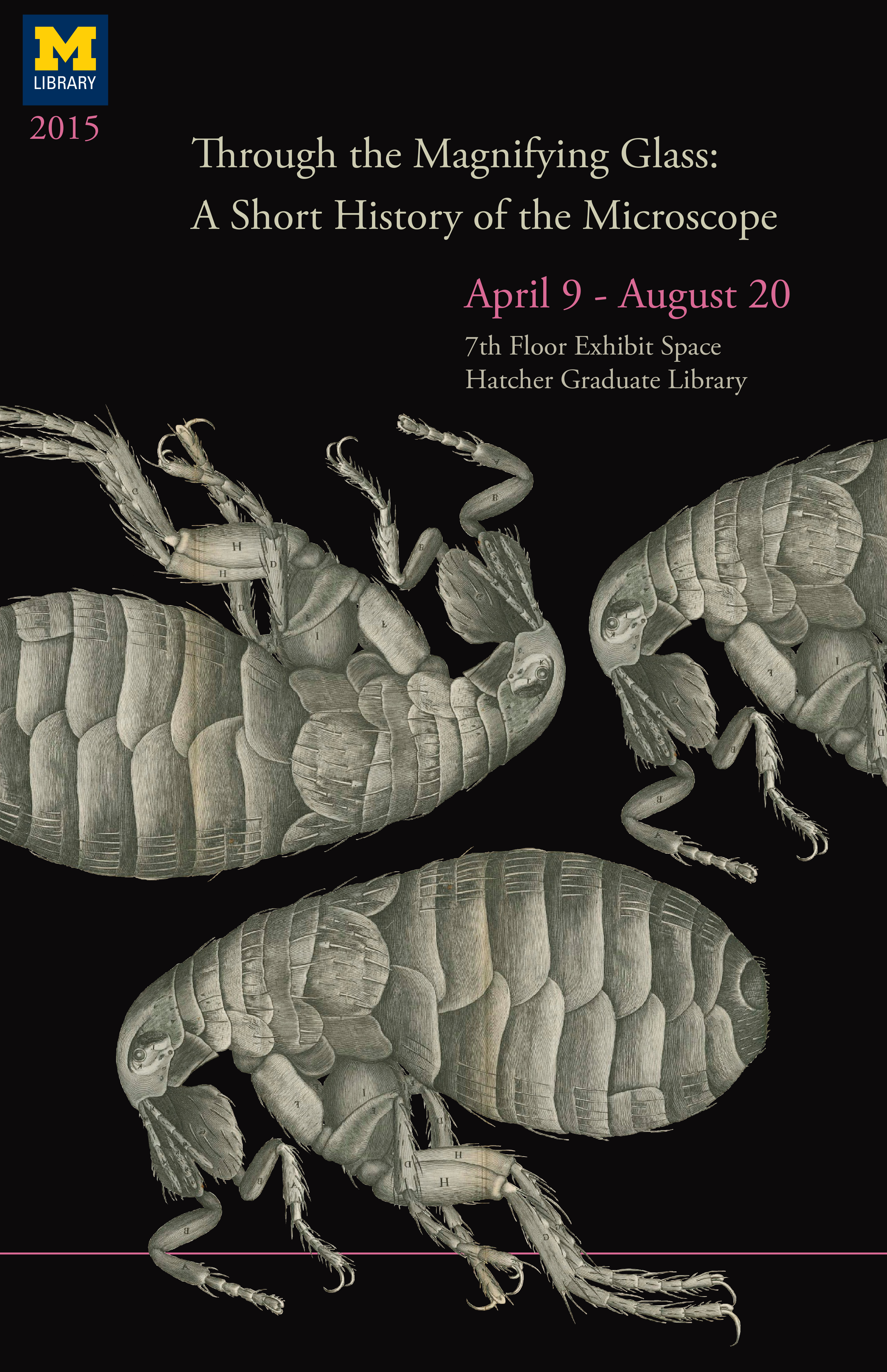 Exhibit Poster Based on an engraving of a flea from Robert Hooke's Micrographia
