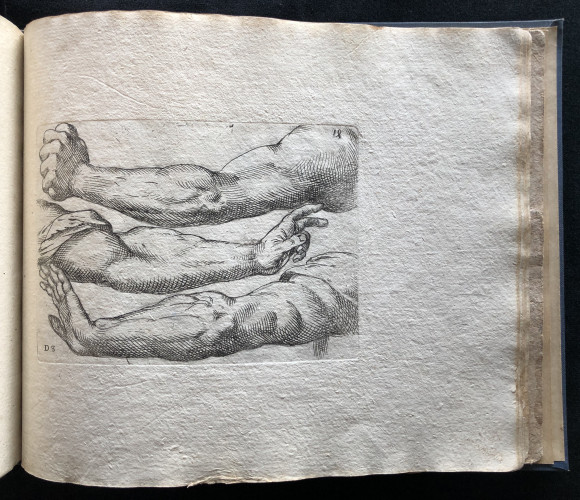 Engraving from Odoardo Fialetti.  Il vero modo et ordine per dissegnar tutte le parti et membra del corpo humano (The Accurate Technique and Order to Draw the Parts and Members of the Human Body)Venice: Remondini, ca. 1700s