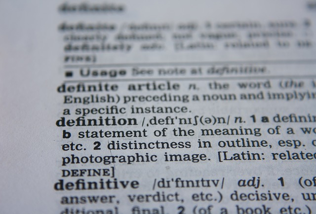 image of a dictionary page with definition of definition in view