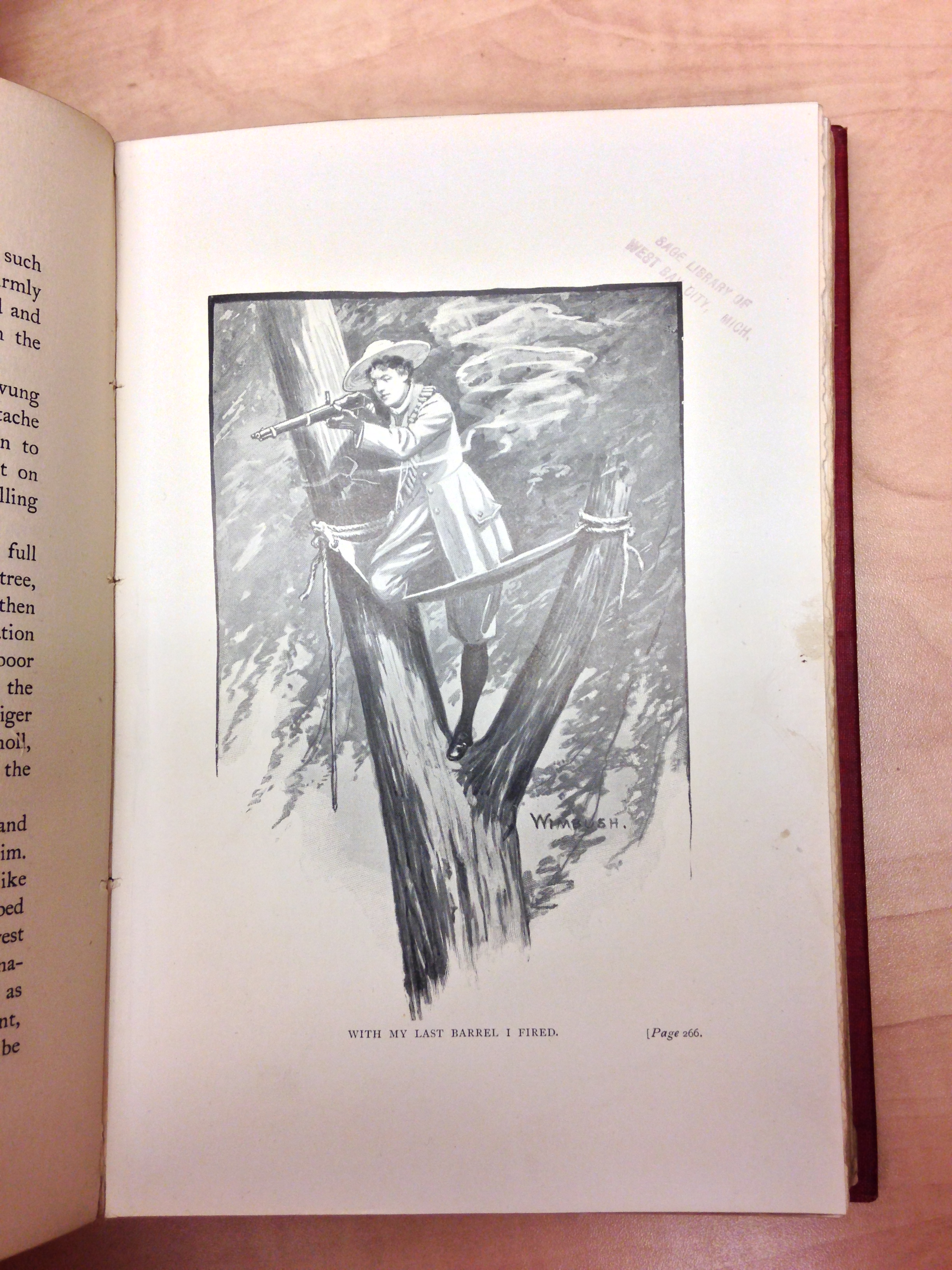 Sportswoman in India standing in a tree and hunting