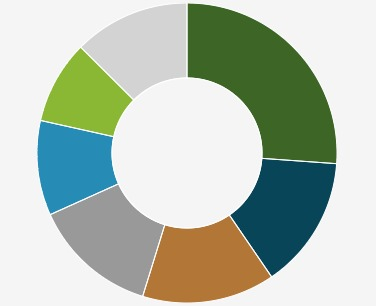 A pie chart illustrating the various activities recorded by the blog author.