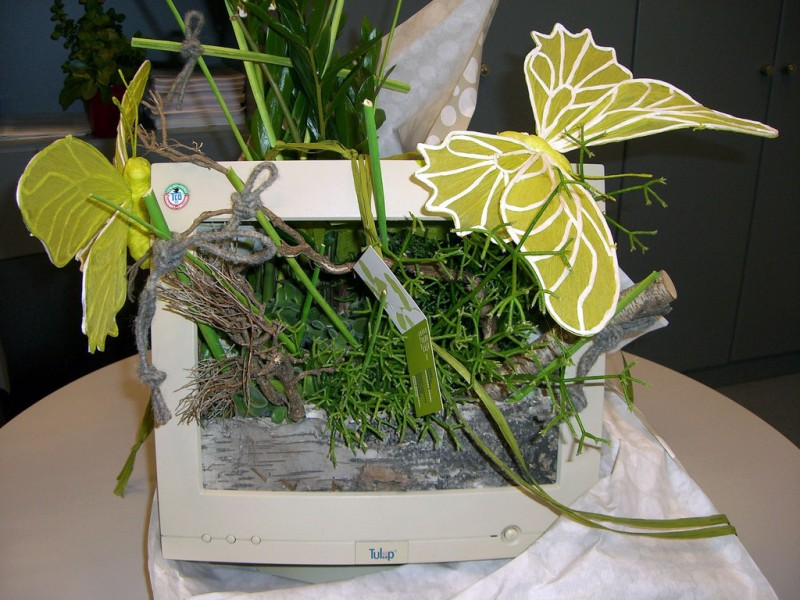 Computer monitor planter