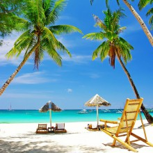 Picture of a tropical beach with palm trees, chaise lounges and umbrellas.
