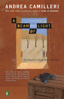 Cover of A Beam of Light by Andrea Camilleri