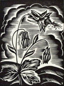 John DePol's black-and-white woodblock print of Columbine flowers.