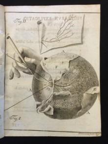 Copperplate engraving  in Philipp Adolph Böhmer's Epistola anatomica problematica de ductibus mammarum lactiferis (Halle an der Saale, Impensis Orphanotrophei,1742)