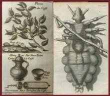 Left: Philippe Sylvestre Dufour (1622-1687). Traitez nouveaux & curieux du cafe, du the et du chocolate. Lyon: Jean Baptiste Deville, 1688; Right: