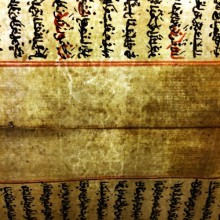 Watermark of grapes with stem and crown above seen across fold of Isl. Ms. 525 p.12 / 17