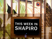 "Lattice wall in Shapiro Lobby with Audubon bird in background and text on a dark digital screen that says, ""This week in Shapiro."""