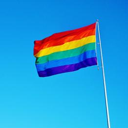 rainbow flag on pole