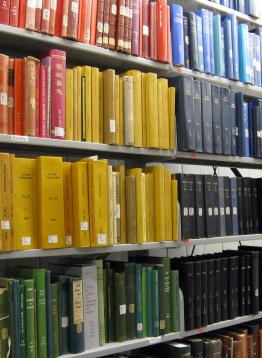 Buhr bookshelves holding a rainbow of cover colors