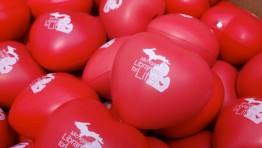 Heart-shaped red stress balls imprinted with the Michigan Libraries for Life logo